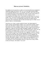 Dharma systemet i hinduiska | B i betyg