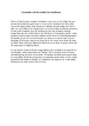 Livsmålet och livsstadier hos hudismer | Religion | B i betyg