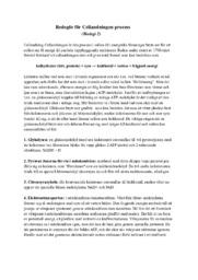Redogör för Cellandningen process | B i betyg