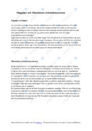 Däggdjur och Människans cirkulationssystem | B i betyg