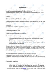 Cellandning | Biologi | B i betyg