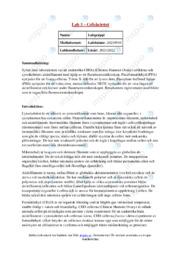 Cellskelettet   Uppgift   A i betyg